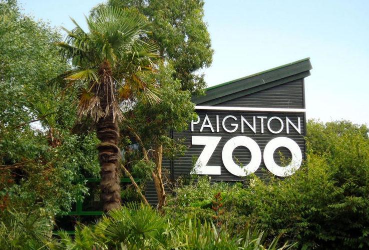 Paignton-Zoo-Devon